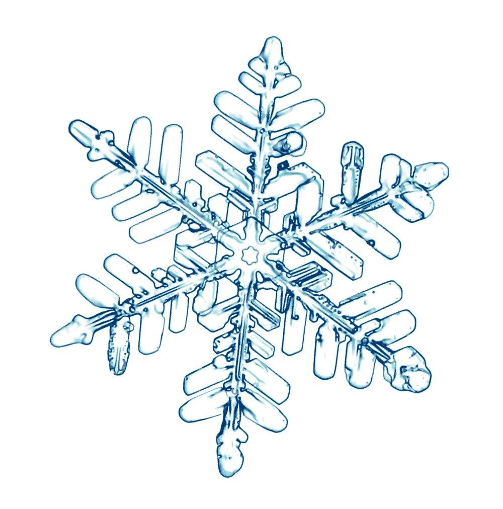 La neiges et ses transformations - Dessin etoile des neiges ...