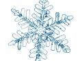 %c3%a9toile-de-neige-fra%c3%aeche