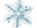 %c3%a9toile-de-neige-fra%c3%aechep
