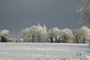 Neige : Episode de neige du 22 fevrier 2005 dans le Tregor (22). 12 cm de neige collante tombes en une nuit.